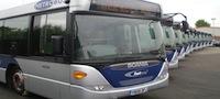 Metrobus vehicles