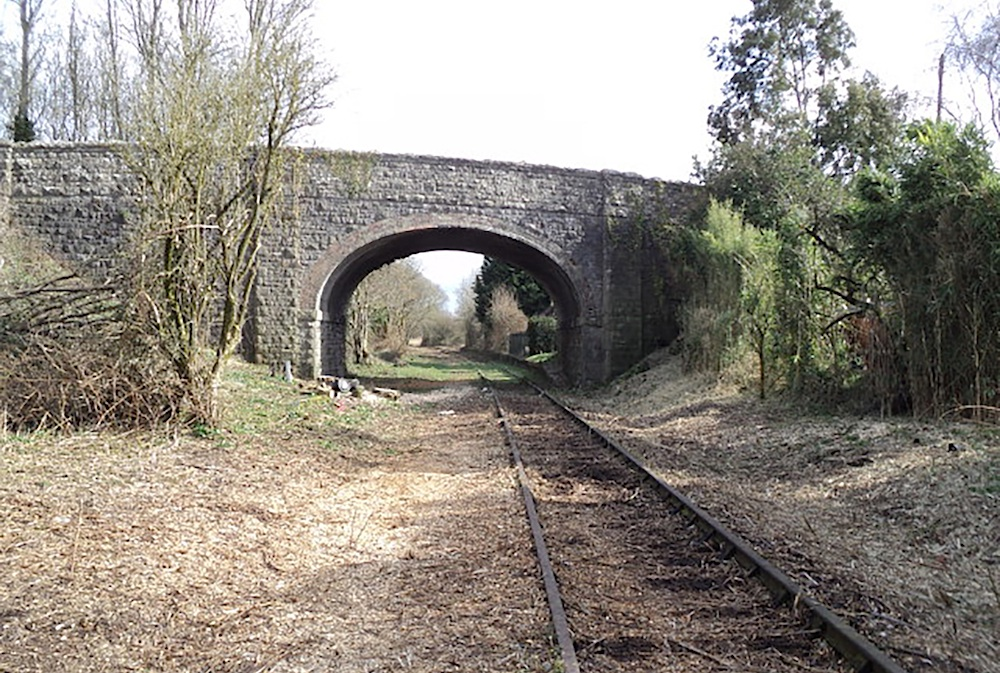 Portishead line cleared of vegetation